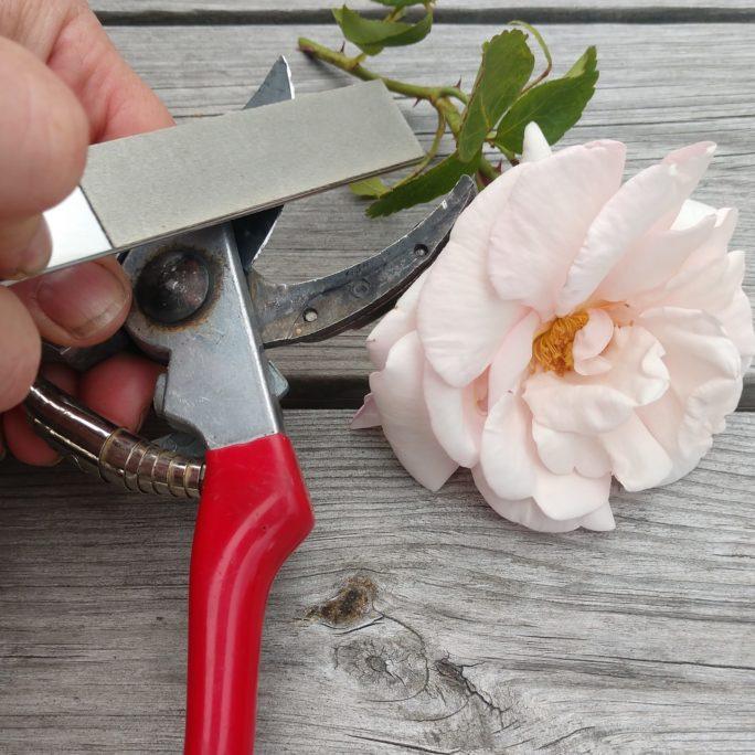 Gardener's sharpeners
